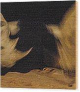 Rhino Clash Wood Print