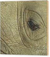 Rhino Eye Wood Print