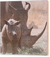 Rhinoceros With Calf Wood Print