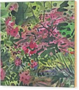 Rhododendrons And Azaleas Wood Print