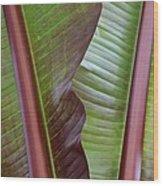 Ribbed Wood Print