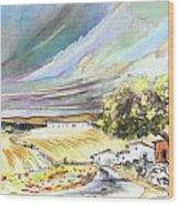 Ribera Del Duero In Spain 13 Wood Print