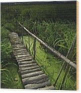 Rice Bridge Wood Print