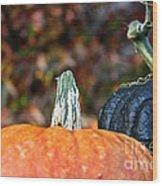 Rich Autumn Colors Wood Print