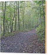 Richland Mine Trail Wood Print