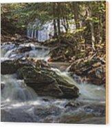 Ricketts Glen State Park Wood Print