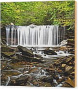 Ricketts Glen Waterfall Oneida Wood Print