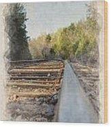 Riding The Rail II Wood Print