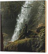 Rifle Falls IIi Wood Print