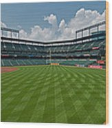 Right To Left At Oriole Park Wood Print