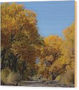 Rio Grande Cottonwoods Wood Print by Denice Breaux