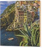 Rio Maggiore Cinque Terre Italy Wood Print