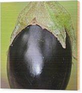 Ripened Eggplant Wood Print