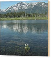 Ripples On Lake Of Mt Tallac Wood Print