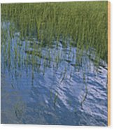 Rippling Water Among Aquatic Grasses Wood Print