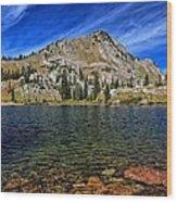 Ripply Waters Of Lake Cathrine Wood Print