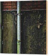 Rising Damp Wood Print
