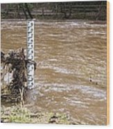 Rising River Level Wood Print