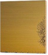 Rising Sun Panorama Wood Print