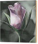 Rita Rose Wood Print