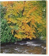 River Camcor In The Fall  Co Offaly Wood Print