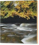 River Camcor Wood Print