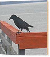 River Crow Wood Print