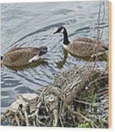 River Cruising Wood Print