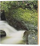River Flowing Through A Forest, Torc Wood Print