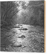 River Gaze Wood Print