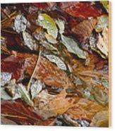 River Leaves Wood Print by LeeAnn McLaneGoetz McLaneGoetzStudioLLCcom