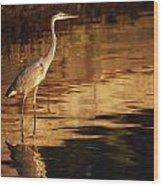 River Liffey, County Dublin, Ireland Wood Print