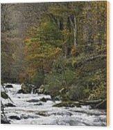 River Lyn In Autumn Wood Print