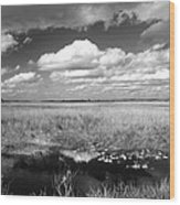 River Of Grass - The Everglades Wood Print