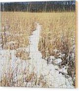 River Of Snow Wood Print