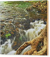 River Rapids Wood Print by Elena Elisseeva
