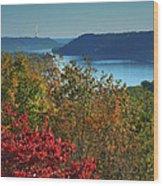 River View V Wood Print