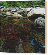 River Water And Rocks Wood Print