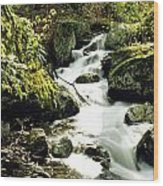 River With Rocks In The Forest Wood Print