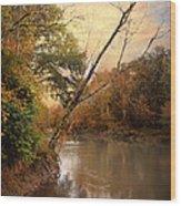Riverbank 1 Wood Print