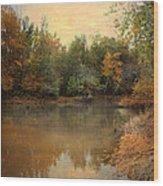 Riverbank 2 Wood Print