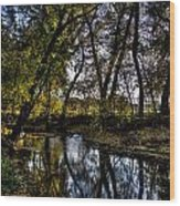 Rivers Edge Wood Print by Dan Crosby