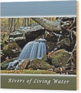 Rivers Of Living Water Wood Print