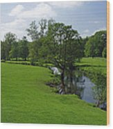 Riverside Meadows - Ashford-in-the-water Wood Print