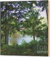 Riverside View Landscape Wood Print