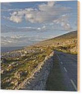 Road Along The Burren Coastline Region Wood Print