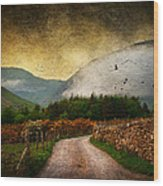 Road By The Lake Wood Print