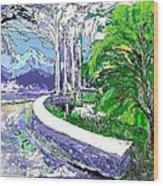 Road End Wood Print