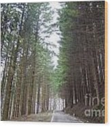 Road In The Forest Wood Print