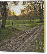 Road Less Traveled Wood Print by Cris Hayes